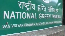 NGT:Rs 5,000 environment compensation for possessing banned plastic in Delhi