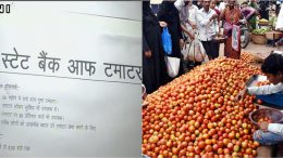 Tomato bank's:Congress opens 'State Bank of Tomato' in Lucknow to protest against rising prices