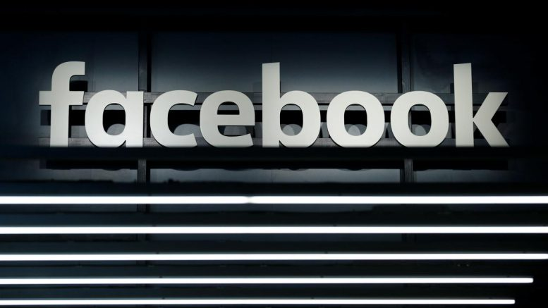 German campaign: Facebook says deleted many fake accounts