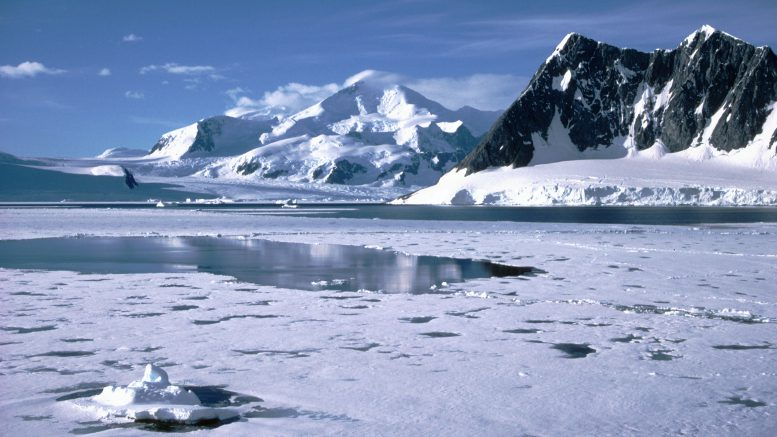 Massive hole reopens in Antarctic sea ice: Scientists