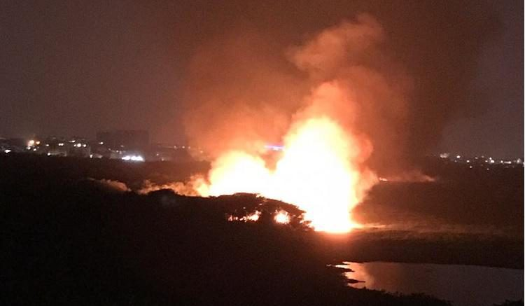 Fire breaks out at Bellandur Lake second time